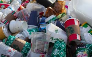 Cups Thrown Away